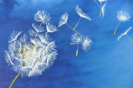Fleur de pissenlit - Huile sur toile
